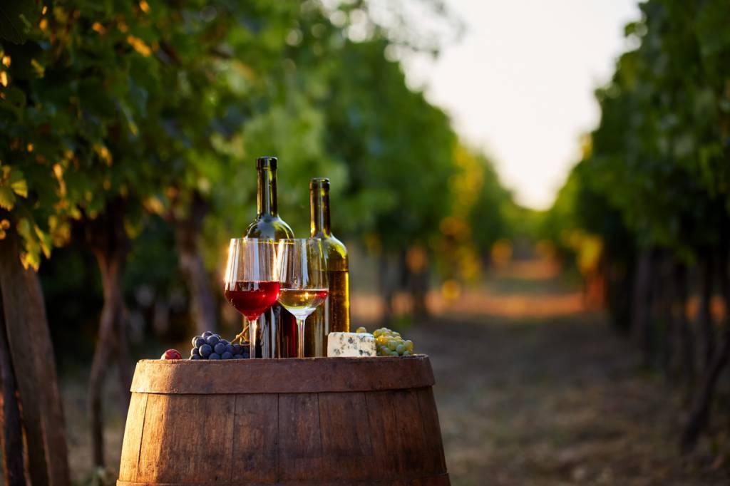 vin rouge bon pour la santé