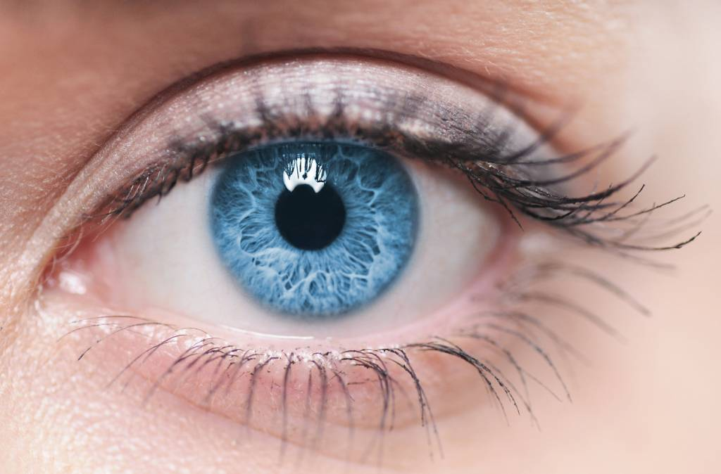 lentille couleur yeux